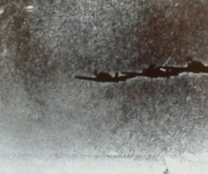Foos with Japanese Torpedo Planes, Izu Islands, Japan